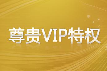 仙侠道尊贵VIP特权