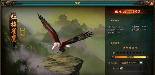 九阴九阳神雕:红梅雀鹰